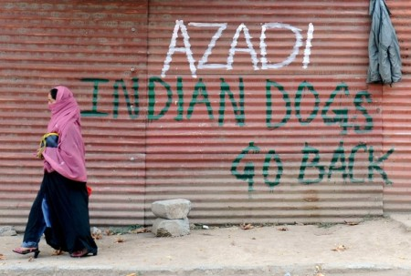 Indian dogs go back home