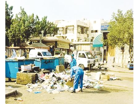 Saudi scavenging3