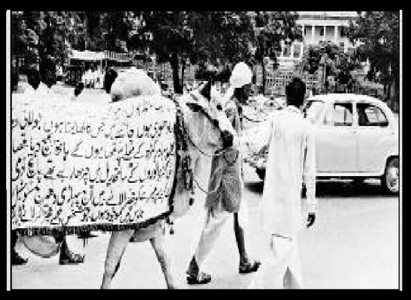 1966 anti-cow slaughter rally Delhi.1